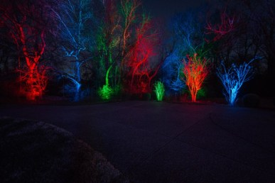 Color saturation outdoor lighting