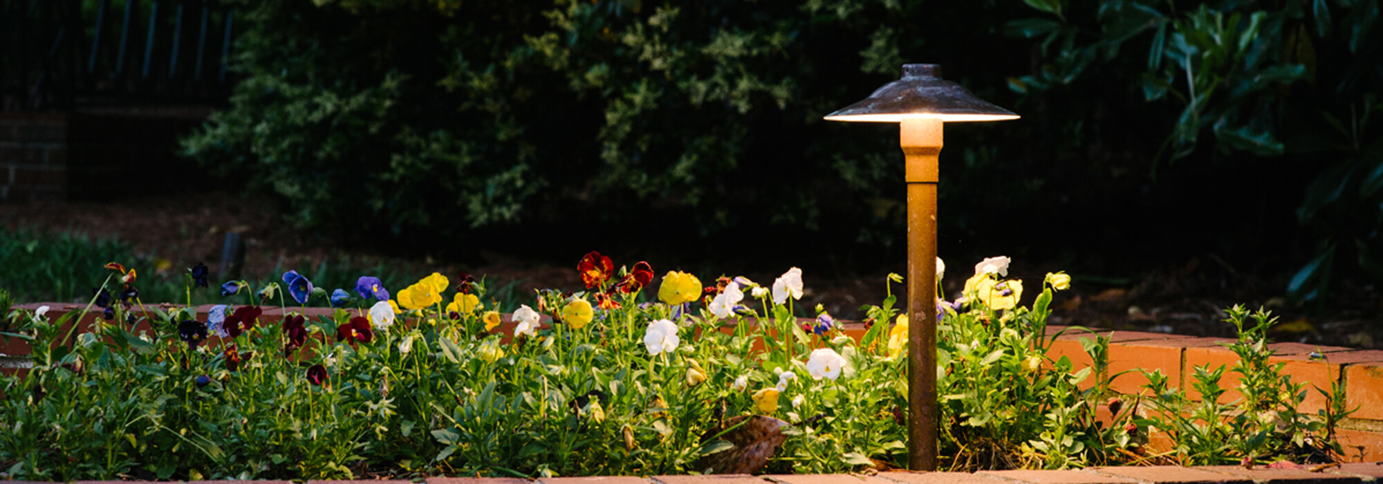 Garden lighting in flower bed