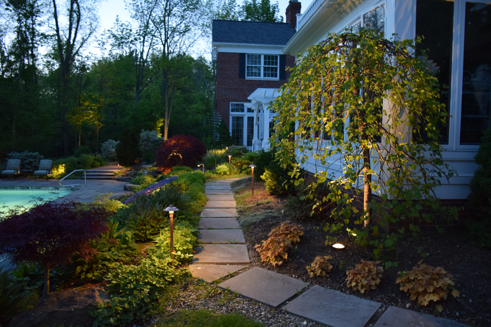 Landscape LED lighting in backyard