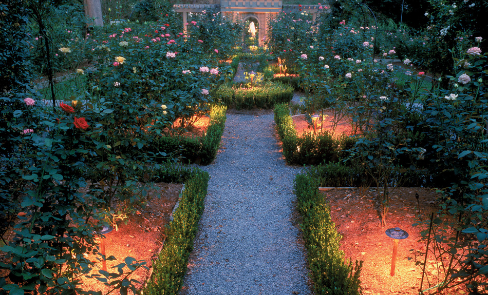 Garden pathway with lighting