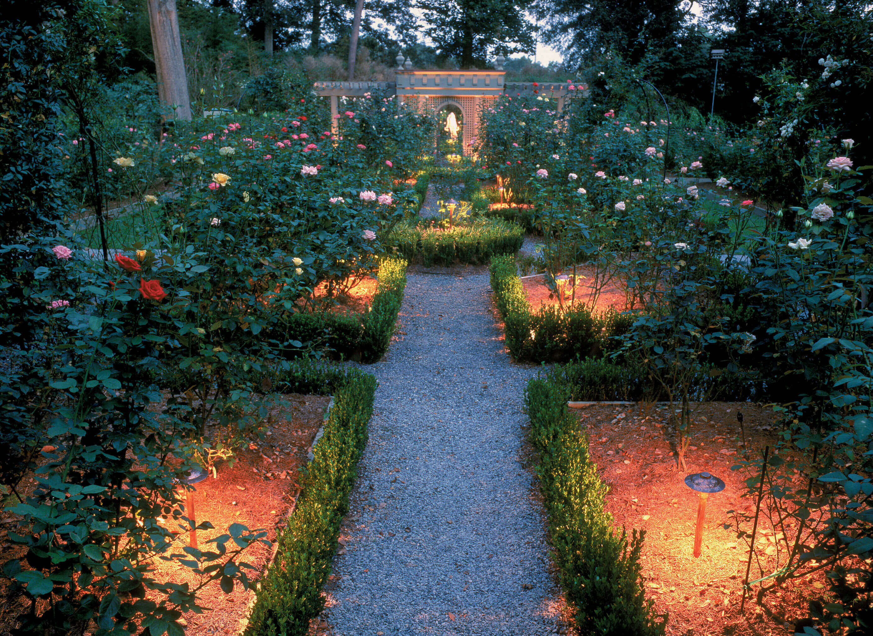 Garden with lighting