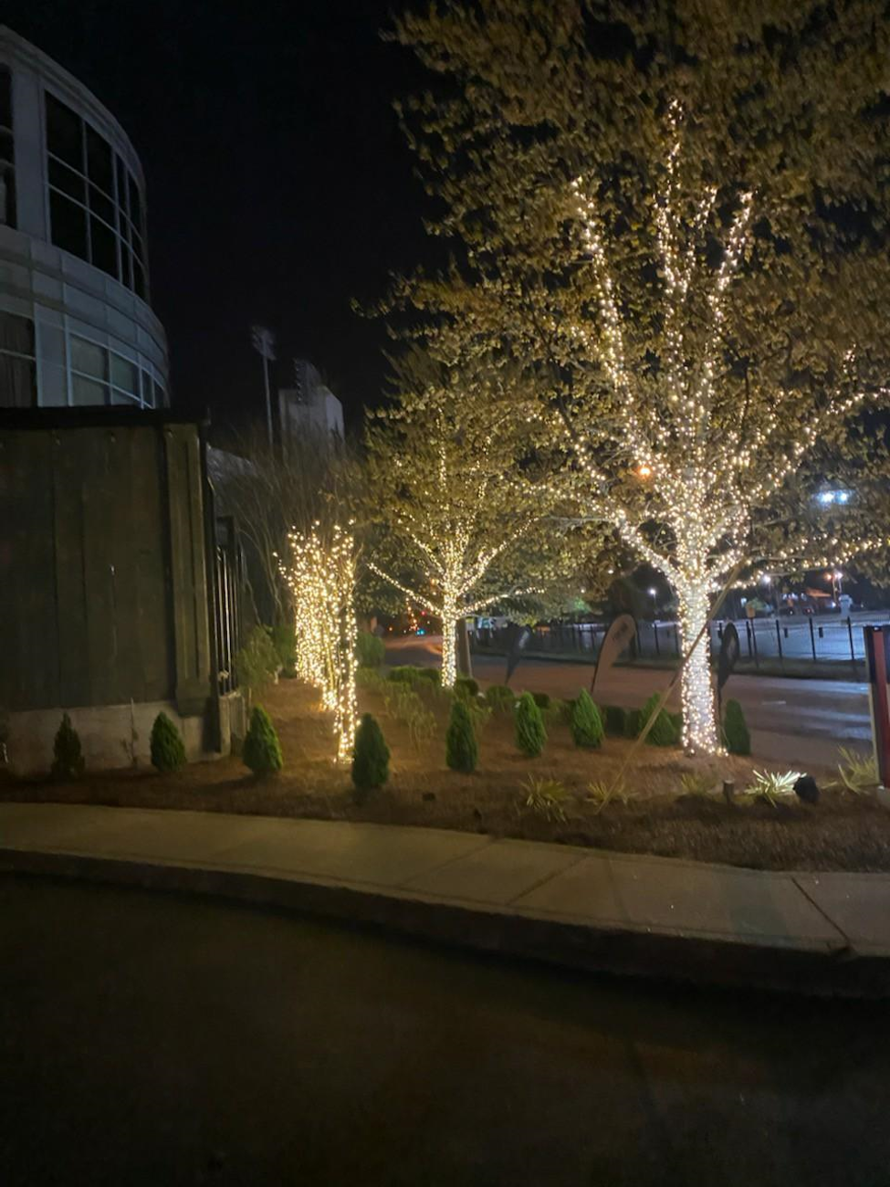 tree lighting for commercial buildings