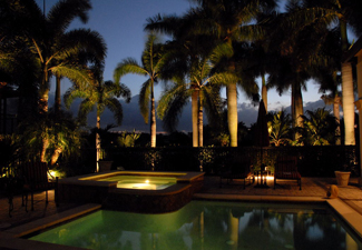 A pool surrounded by palm trees with beautiful outdoor lighting