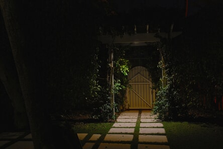 focal lighting on garden door