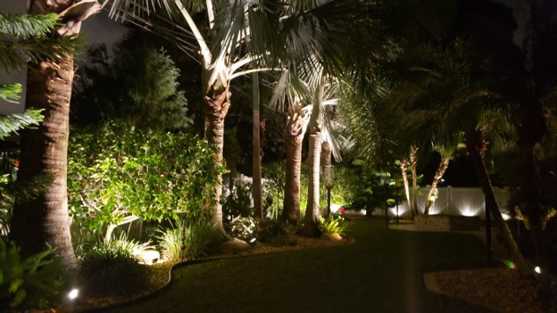 night time visual of palm trees and residential yard with illumination planter lighting
