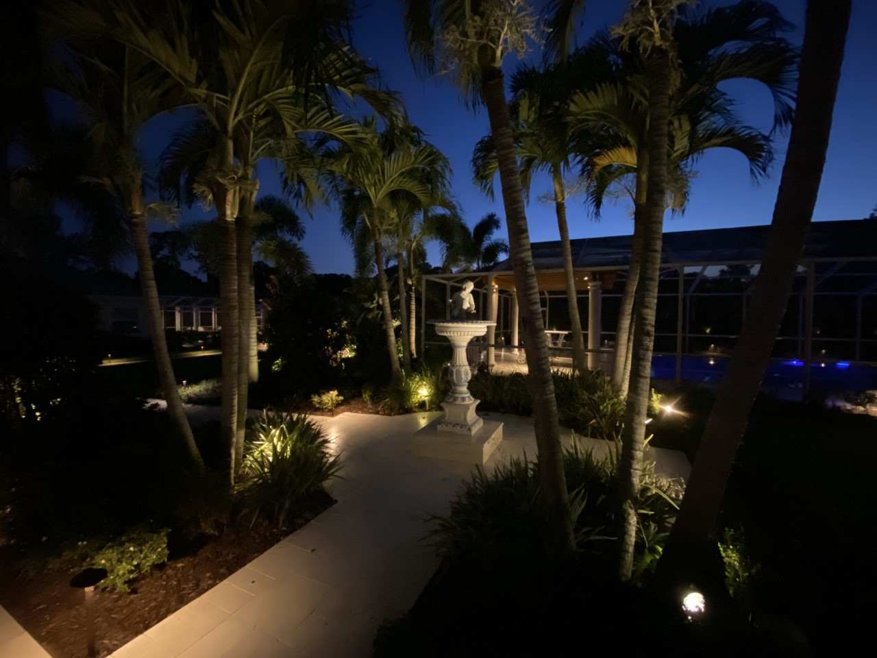 pathway lighting with palmtrees