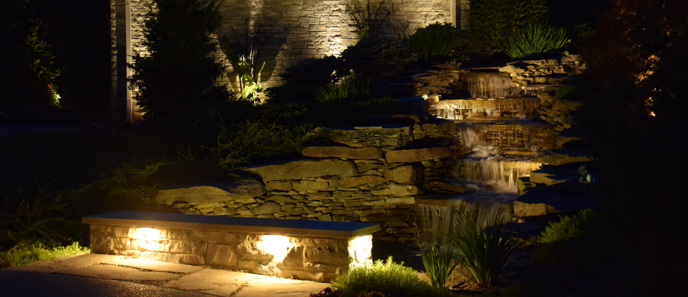 LED landscape lighting of plants and stairway