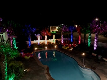 palm tree lights in different colors