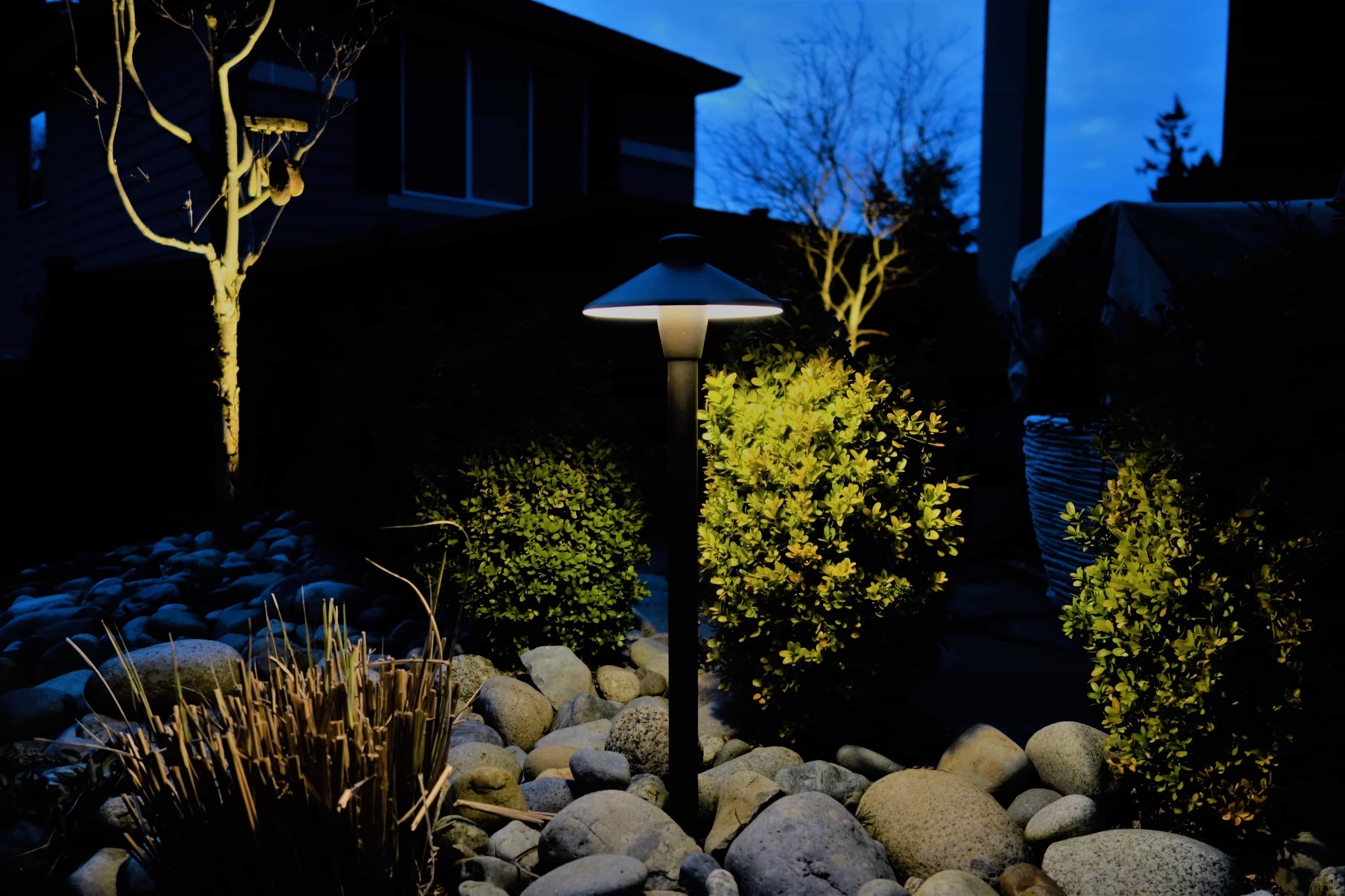 Rocks and greenery with landscape lighting
