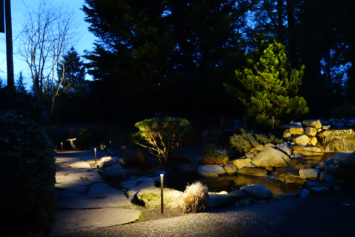 Yard and rock pathway lit by pathway lights