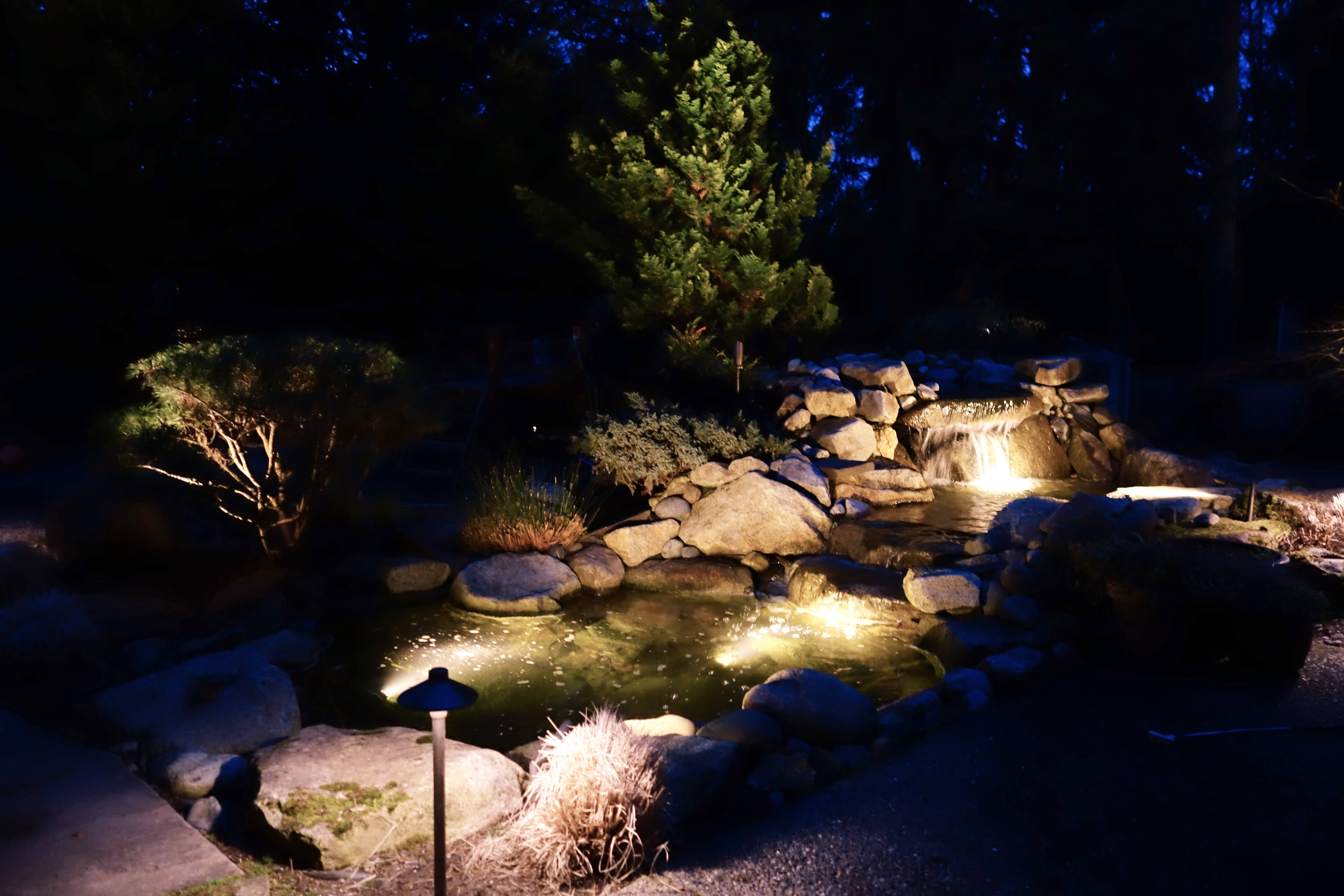 Rock and water feature lit at night