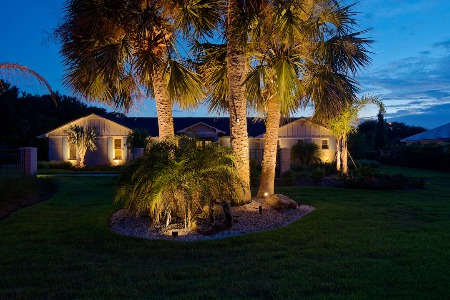landscape lighting on palm trees at sunset