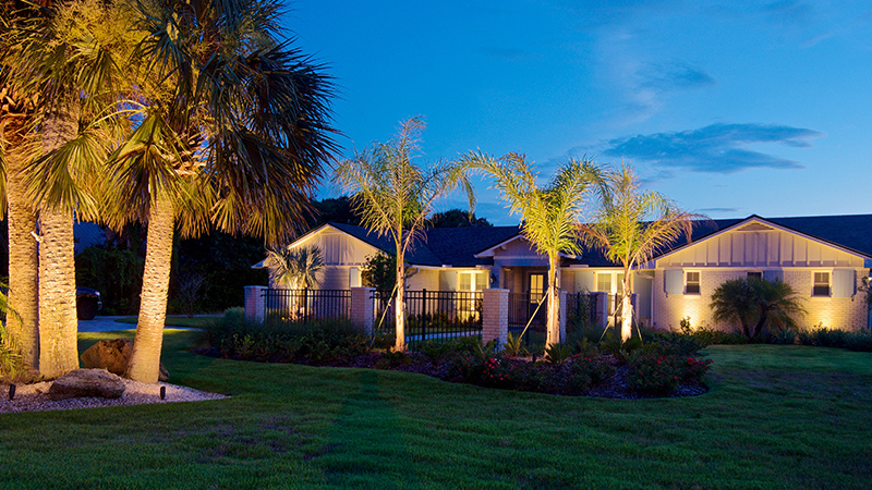 home with palm tree lighting