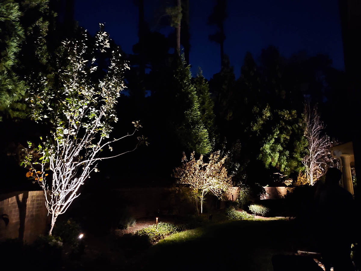 Professional Landscape Lighting In Richmond Charlottesville For A Custom Curb Appeal Outdoor Ambiance
