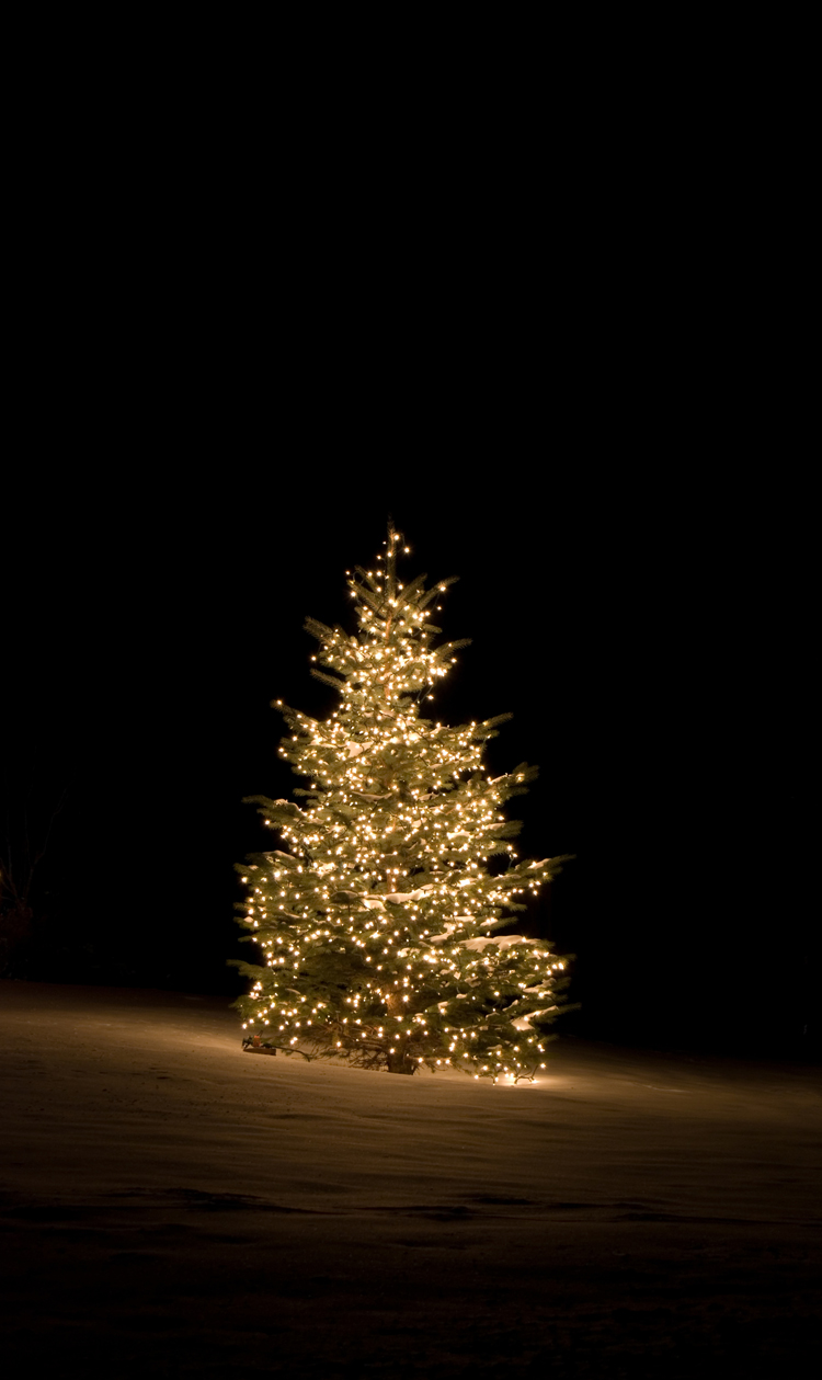 holiday residential lighting services outdoor lighting perspectives of indianapolis outdoor lighting perspectives