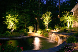 Backyard pond lit up with lights