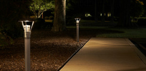 Outdoor pathway illuminated by lights