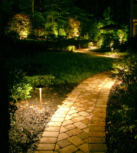 Path lights installed by Outdoor Lighting Perspectives of Kansas City