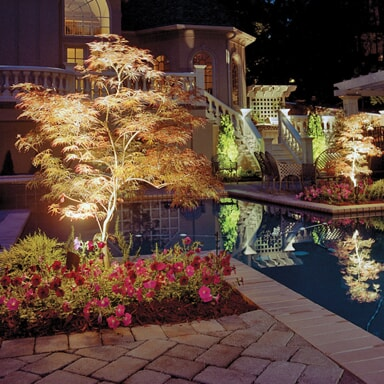 pool and landscape lighting on trees around pool