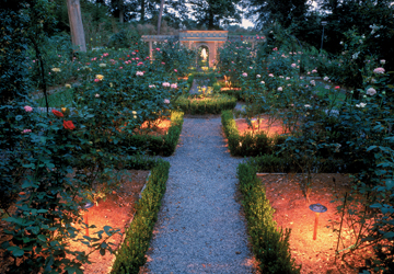 Rose garden with rock pathway and landscape lighting