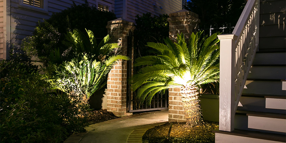 Pathway with a gate that has palm trees and is highlighted with landscape lighting