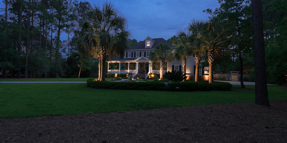 Palm trees and yard with landscape lighting