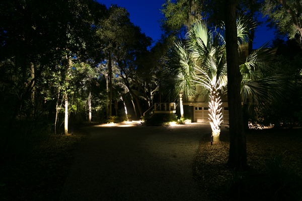 Dirt pathway with palm trees and oak trees lit with landscape lighting